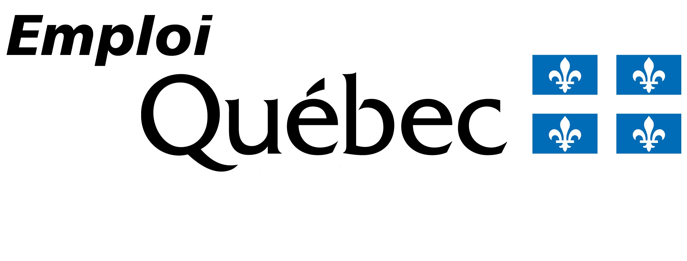 13-Emploi-quebec-logo-1